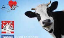 Il latte è un alimento sano? | La parola all'esperto